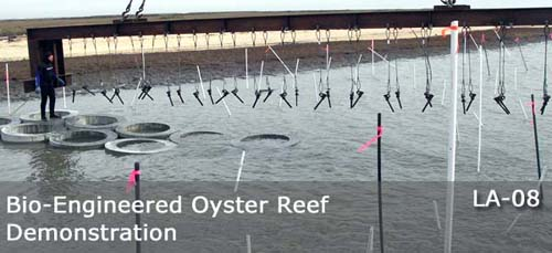 OysterBreak-Ring-Installation